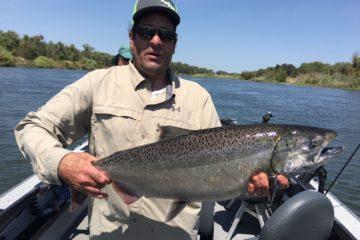 Salmon Sacramento